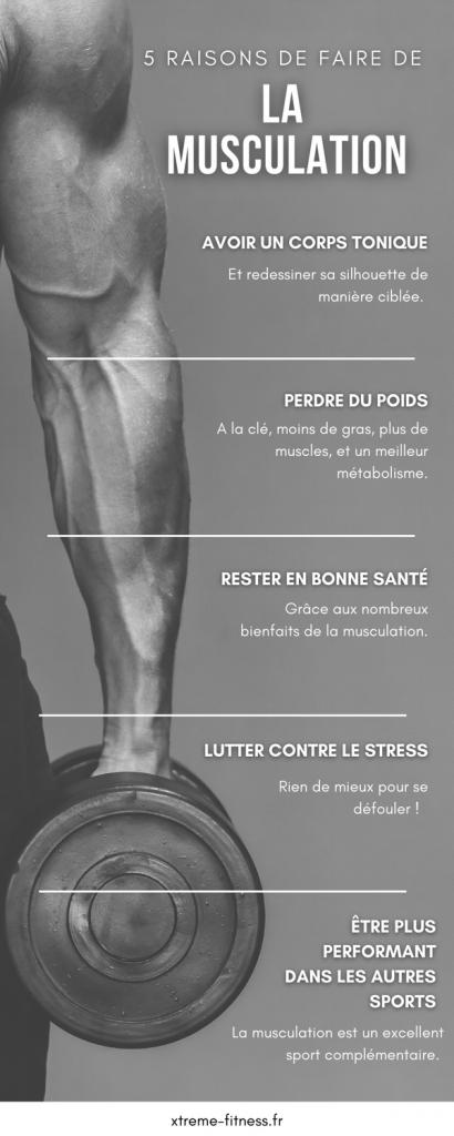 Infographie Pourquoi Faire De La Musculation